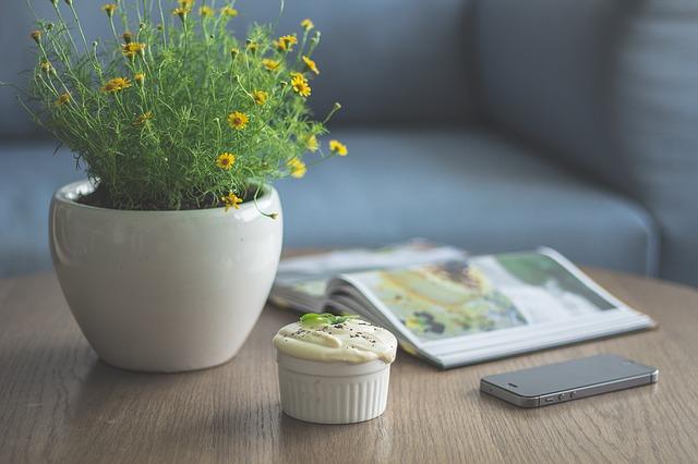 kvetináč na stole