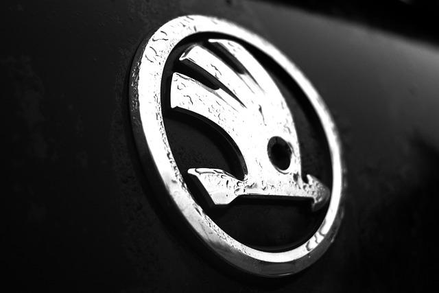 logo škody.jpg