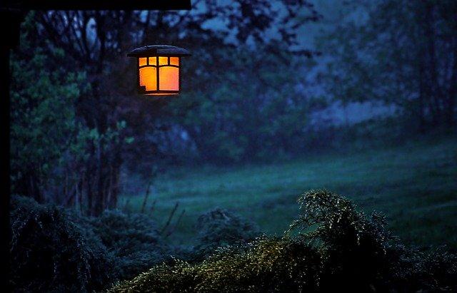 Lampáš so žiarovkou zavesený na strome v záhrade.jpg